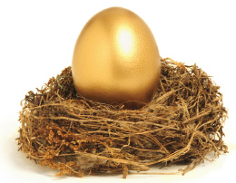 Golden nest egg equity release